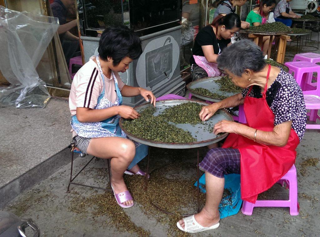 Ladies removing stems from Iron Buddha maocha